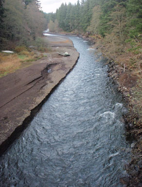 Buck Creek flows from the left side into the White Salmon River. Photos courtesy of Heather Herbeck.