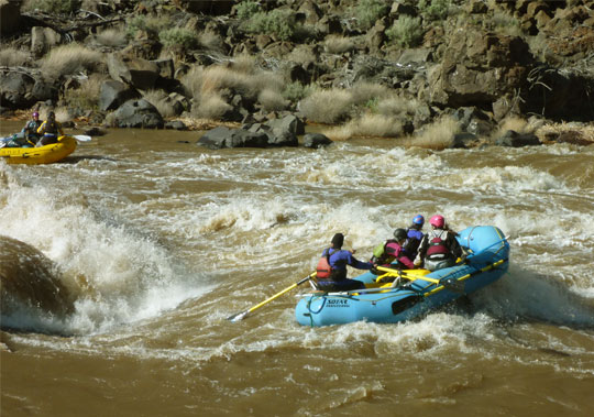 Lance narrowly misses a flipping wave, giving his passengers the best ride of the trip, Owyhee River, Oregon