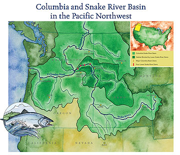 Save Our Salmon's map of lower dams on Snake River