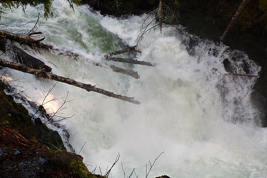 BZ Falls on the White Salmon looking nasty. Reports say that these logs may no longer be there.