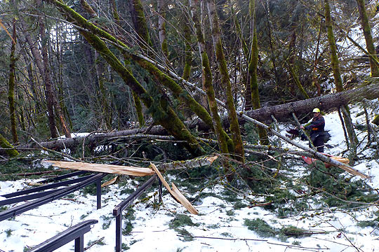 Wood on the White Salmon River BZ launch site