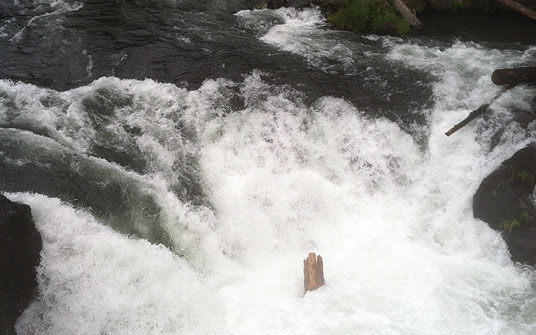 Wood in Husum Falls, White Salmon River