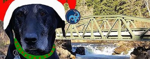 kayaking and rafting gift certificates for the holidays