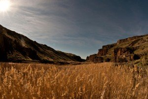 Overlooking a gorgeous field on the Owyhee River