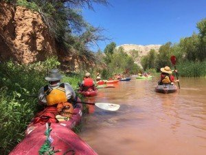 Sharing the Verde River in Arizona by kayak