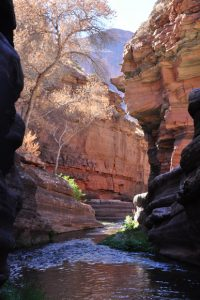 deer creek grand canyon