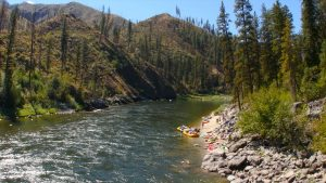 Main Salmon River Trip