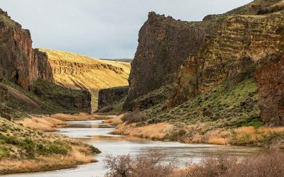 owyhee river canyon