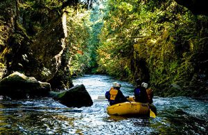 Whitewater Rafting in Oregon